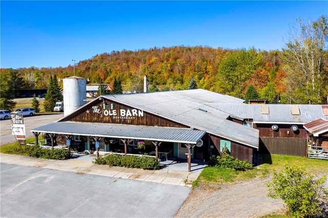 78 Limekiln Road, Inlet, NY 13360 (MLS #S1352049) :: Serota Real Estate LLC