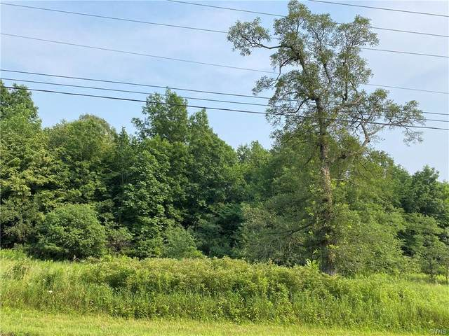 xx Co Route 179, Lyme, NY 13622 (MLS #S1352093) :: Robert PiazzaPalotto Sold Team
