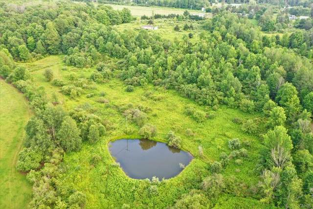 2448 County Route 50, Dansville, NY 14572 (MLS #S1352743) :: Robert PiazzaPalotto Sold Team