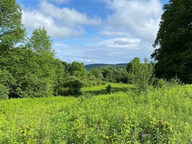 2934 Route 41, Freetown, NY 13040 (MLS #S1352898) :: BridgeView Real Estate