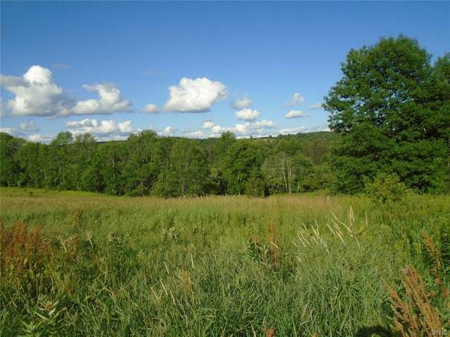 Lot #27 Ridgeview Road, Plymouth, NY 13815 (MLS #S1352944) :: Robert PiazzaPalotto Sold Team