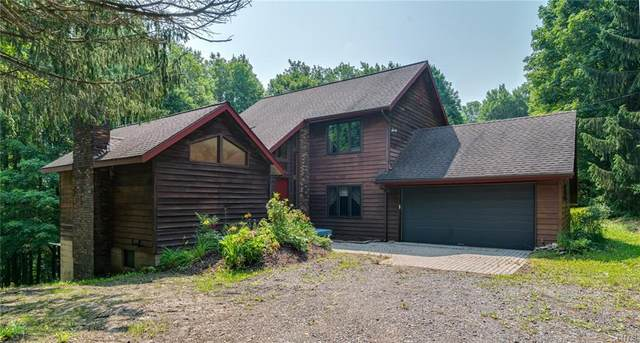 1650 Sky High Road, Tully, NY 13159 (MLS #S1353117) :: Robert PiazzaPalotto Sold Team