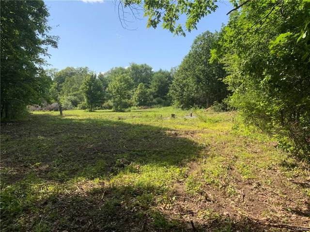 30086 Co Route 179, Lyme, NY 13622 (MLS #S1353552) :: Robert PiazzaPalotto Sold Team