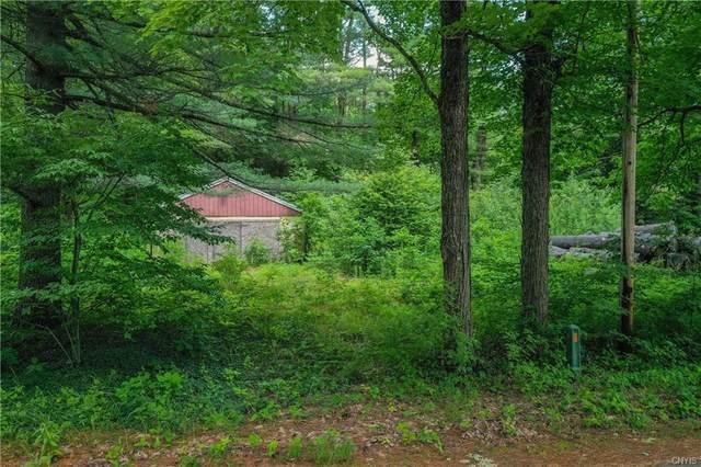118 Millers Grove Road, Salisbury, NY 13329 (MLS #S1353562) :: BridgeView Real Estate