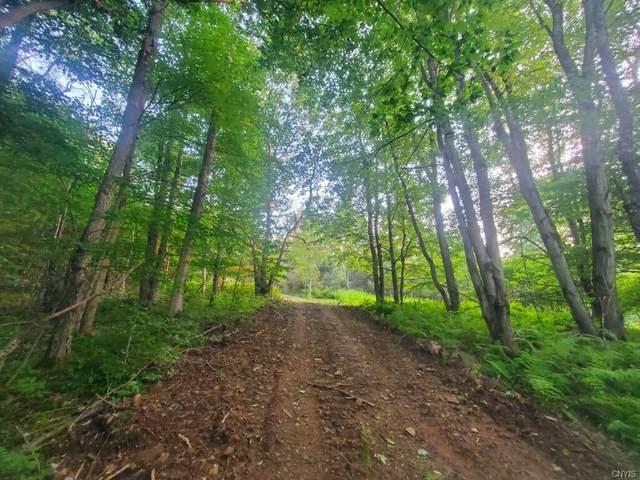 00 Irish Hill Road, West Union, NY 14877 (MLS #S1353944) :: Thousand Islands Realty