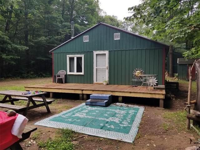 7559 Otter Creek Truck Trail, Greig, NY 13345 (MLS #S1354166) :: TLC Real Estate LLC