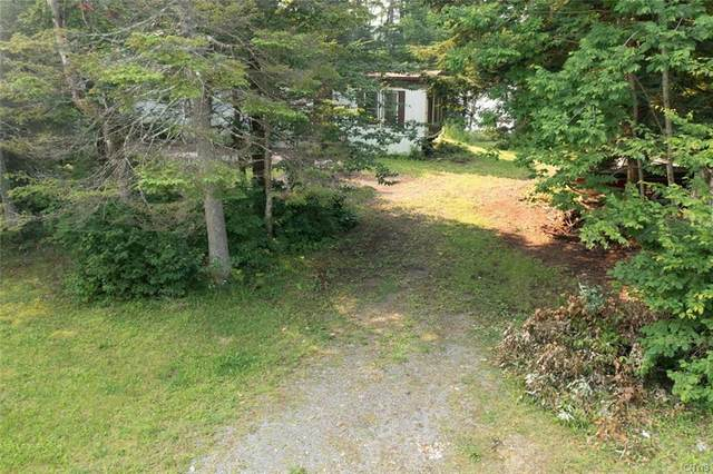810 State Route 365, Russia, NY 13438 (MLS #S1354483) :: TLC Real Estate LLC