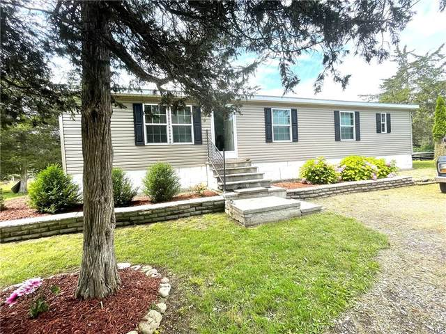 6379 Lasher Rd Ext 1, Henderson, NY 13650 (MLS #S1354743) :: Robert PiazzaPalotto Sold Team