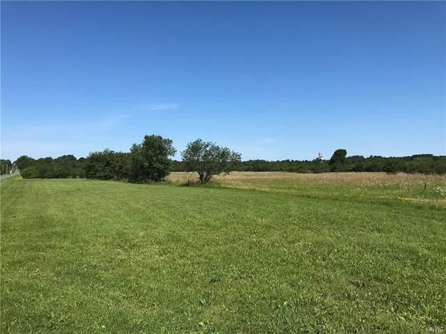 0 Sulphur Springs Road, Hounsfield, NY 13685 (MLS #S1356172) :: BridgeView Real Estate
