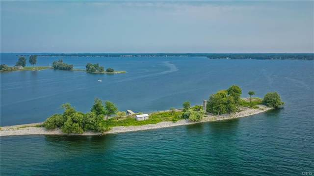 1 Little Grenadier, Cape Vincent, NY 13618 (MLS #S1358075) :: Thousand Islands Realty