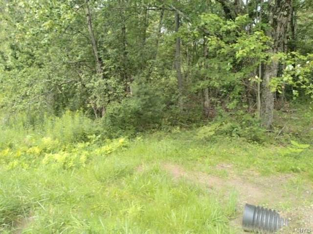 00 Co Rt 17, Redfield, NY 13493 (MLS #S1359727) :: BridgeView Real Estate