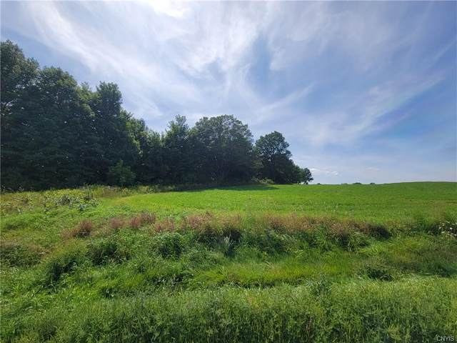 00 State Route 26, Lowville, NY 13367 (MLS #S1360262) :: Serota Real Estate LLC