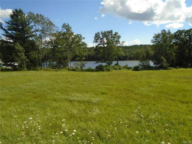 Lot 1 & 1A Route 41, Willet, NY 13863 (MLS #S1360272) :: Serota Real Estate LLC