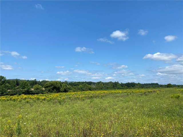 lot 2 California Roa California Road S, Marshall, NY 13328 (MLS #S1360527) :: BridgeView Real Estate