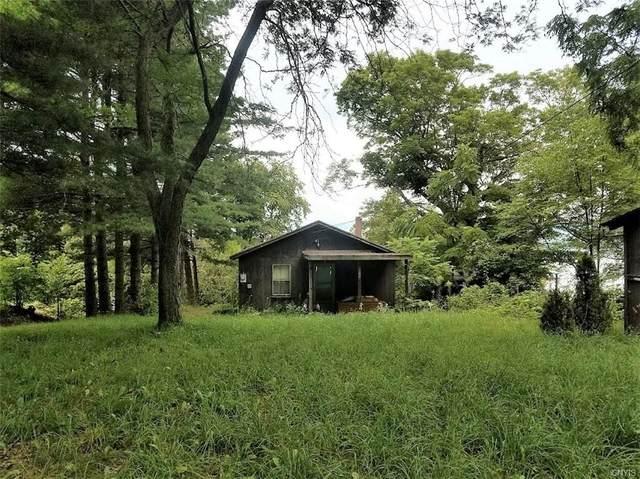 9535 Palisades Lane E, Clayton, NY 13624 (MLS #S1361168) :: Serota Real Estate LLC