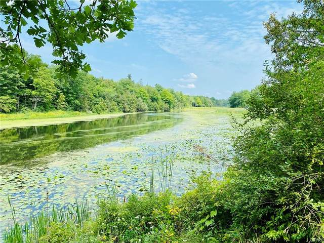 0 N Conklin Drive S, Lyme, NY 13622 (MLS #S1361887) :: BridgeView Real Estate