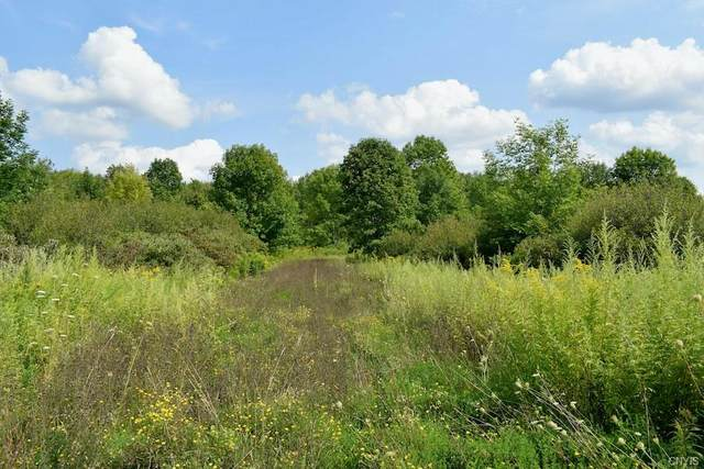 1706 County Route 41, Richland, NY 13142 (MLS #S1362654) :: BridgeView Real Estate