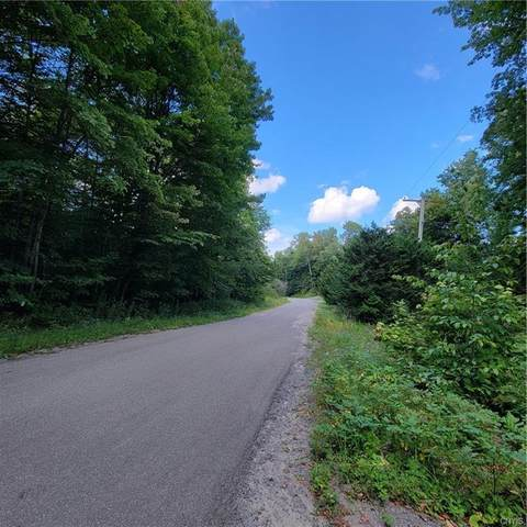 Lot 23.2 Silverstone Road, Russia, NY 13438 (MLS #S1363924) :: BridgeView Real Estate