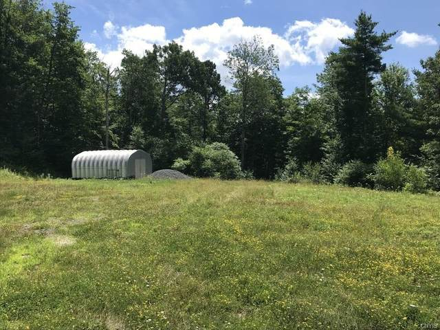 1050 Mill Valley Road, Middleburgh, NY 12122 (MLS #S1363998) :: Robert PiazzaPalotto Sold Team