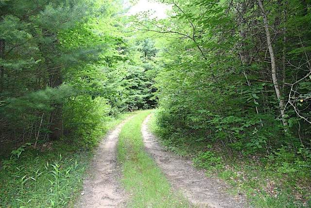 0 Otter Road, Williamstown, NY 13493 (MLS #S1364553) :: BridgeView Real Estate
