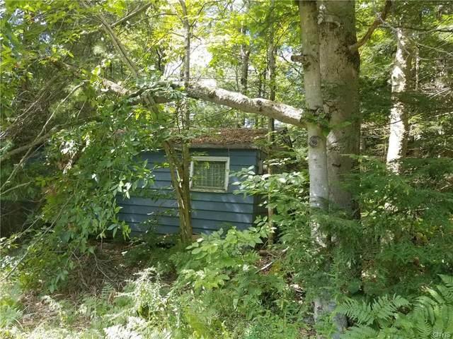 54 Krigbaum Drive, Williamstown, NY 13302 (MLS #S1364593) :: BridgeView Real Estate