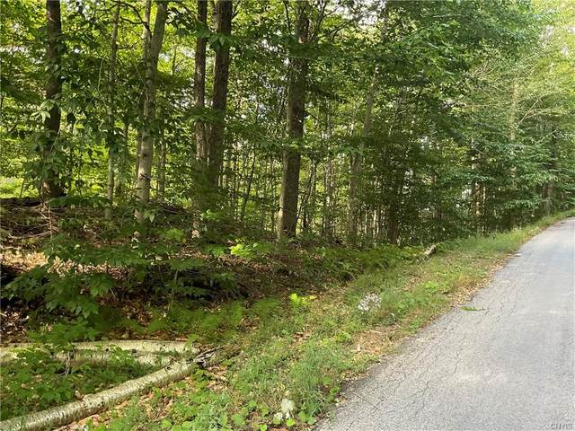 0 State Route 28, Webb, NY 13420 (MLS #S1365728) :: Thousand Islands Realty