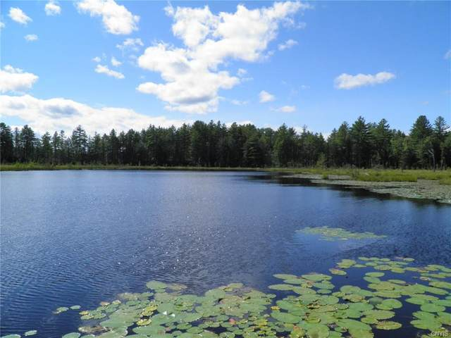 8121 Fowler Road, Lyonsdale, NY 13368 (MLS #S1365779) :: BridgeView Real Estate