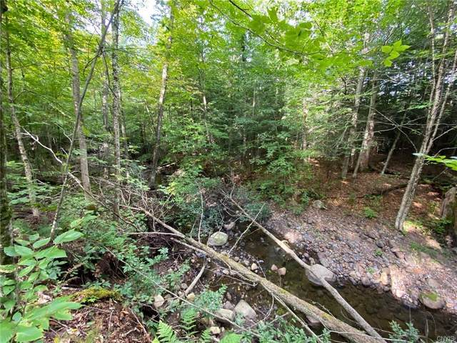0 Sulphur Springs Road, Norway, NY 13324 (MLS #S1365818) :: Thousand Islands Realty