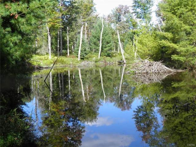 0 Fowler Road, Lyonsdale, NY 13368 (MLS #S1365821) :: BridgeView Real Estate