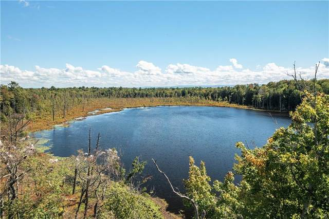 0 Kibbie Lake Road, Constantia, NY 13044 (MLS #S1365830) :: BridgeView Real Estate