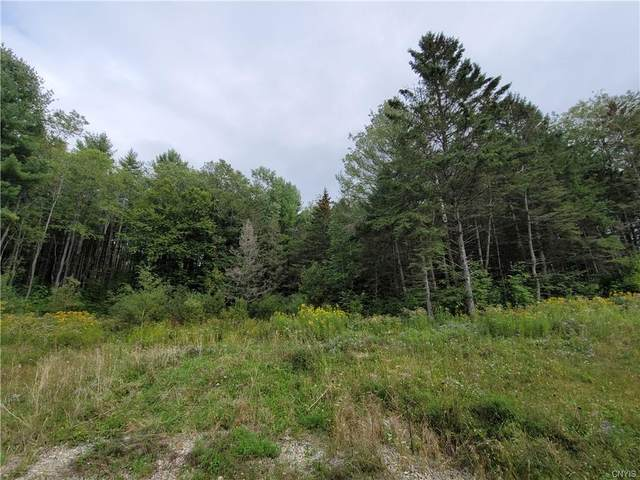 00 State Route 26, West Turin, NY 13325 (MLS #S1366606) :: Serota Real Estate LLC