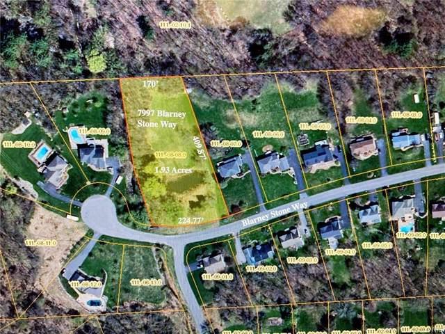 7997 Blarney Stone, Manlius, NY 13104 (MLS #S1366668) :: TLC Real Estate LLC