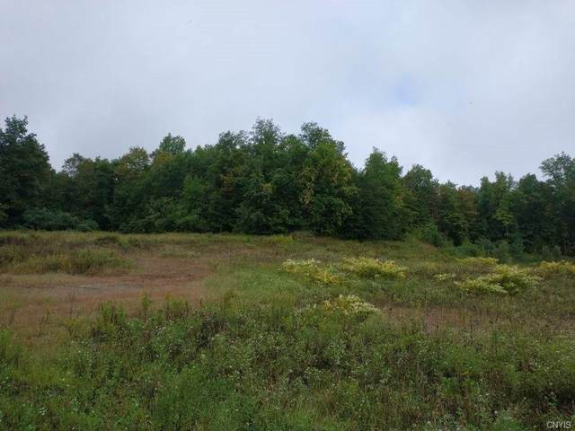 0 Harris Hill Road, Hannibal, NY 13074 (MLS #S1366764) :: Lore Real Estate Services