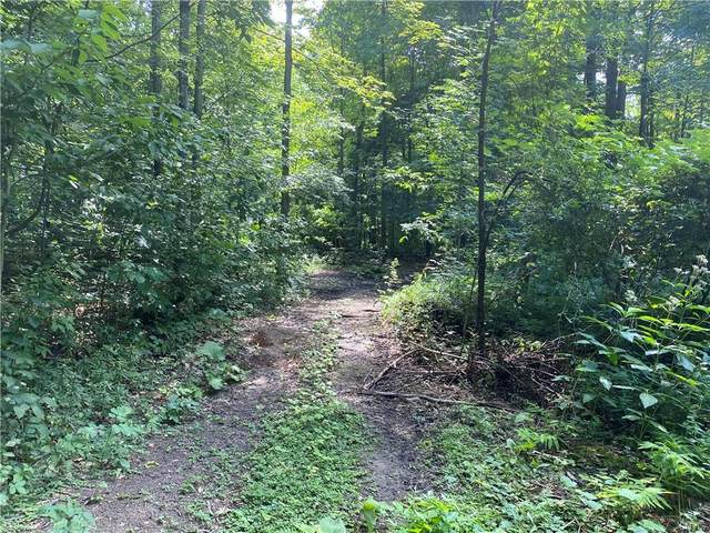 # 17 County Line Rd County Line Road #17, Sennett, NY 13021 (MLS #S1367044) :: Serota Real Estate LLC