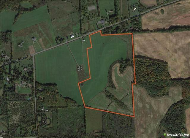 85 acres Salt Springs Road, Manlius, NY 13104 (MLS #S1367051) :: Thousand Islands Realty