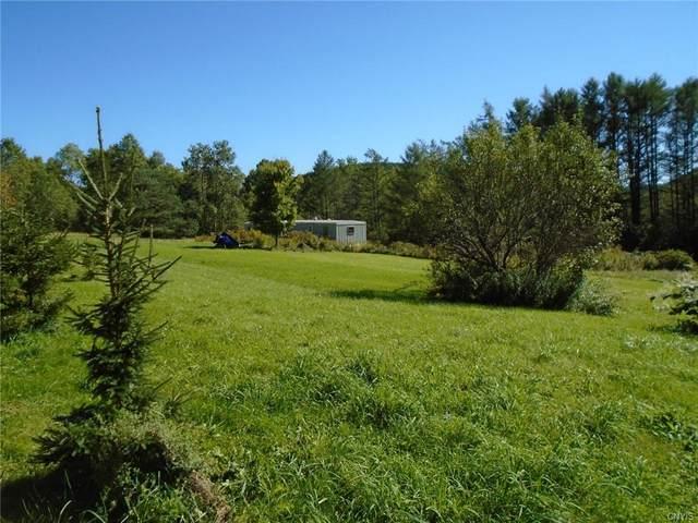 286 Beaver Meadow Road, Smyrna, NY 13832 (MLS #S1367800) :: TLC Real Estate LLC