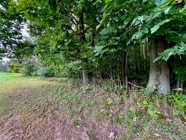 0 Co Rt 5, Richland, NY 13142 (MLS #S1368682) :: Robert PiazzaPalotto Sold Team