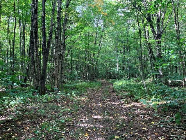 1441 State Route 13, Williamstown, NY 13302 (MLS #S1369141) :: Lore Real Estate Services