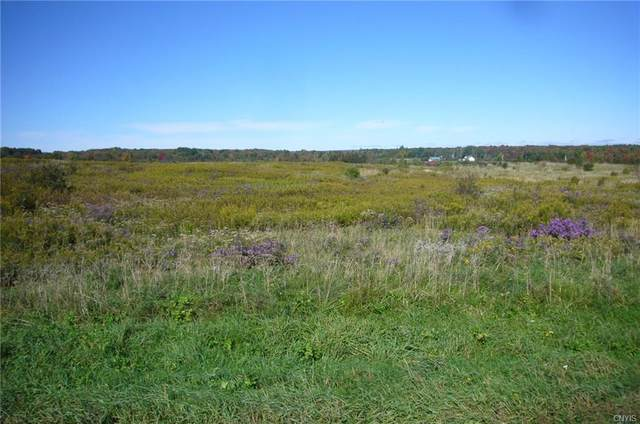 2149 State Route 26, West Turin, NY 13325 (MLS #S1369404) :: Serota Real Estate LLC