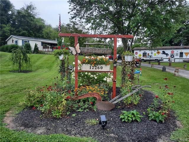 12260 Water Street, Locke, NY 13092 (MLS #S1369959) :: TLC Real Estate LLC