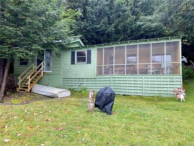 164 Jones Lane, Mc Donough, NY 13460 (MLS #S1370849) :: Serota Real Estate LLC