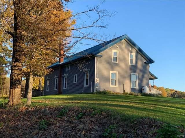 1071 Rose Valley Road, Newport, NY 13324 (MLS #S1371513) :: TLC Real Estate LLC