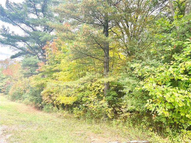 00 Olds Mill Rd Lot 1, Morristown, NY 13664 (MLS #S1371565) :: TLC Real Estate LLC