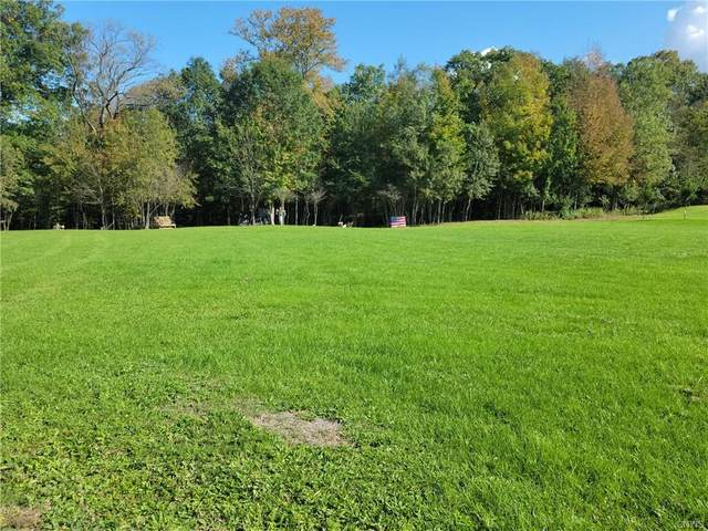 Lot #4 Mckensy Place, German Flatts, NY 13407 (MLS #S1371569) :: Serota Real Estate LLC