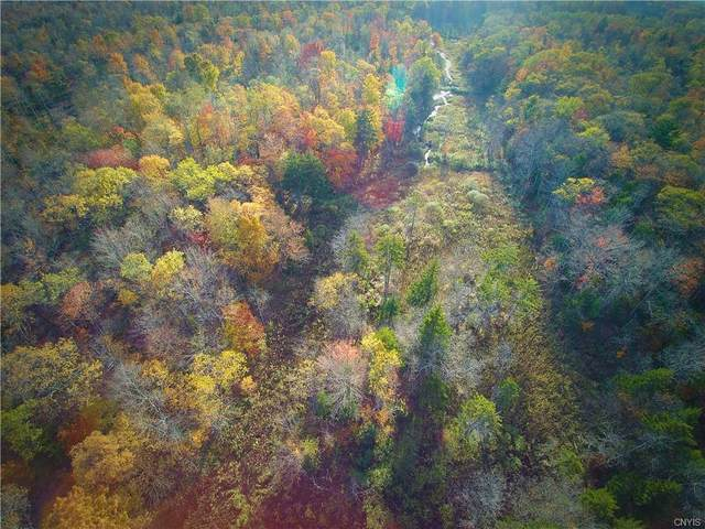 0 Mill Stream Road, Osceola, NY 13367 (MLS #S1371896) :: Serota Real Estate LLC