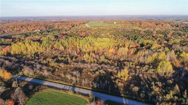 000 Thayer Hill Road, Leyden, NY 13309 (MLS #S1372324) :: Serota Real Estate LLC