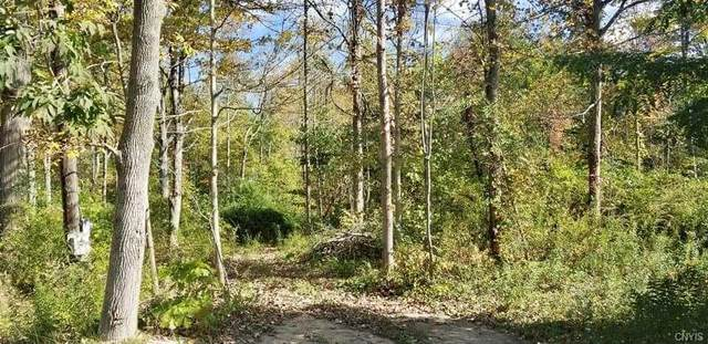 14300 St Rt 104A Highway, Sterling, NY 13156 (MLS #S1372349) :: TLC Real Estate LLC