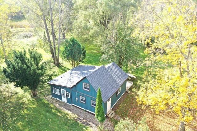 4891 Mcmaster Road, Cameron, NY 14819 (MLS #S1372961) :: Serota Real Estate LLC