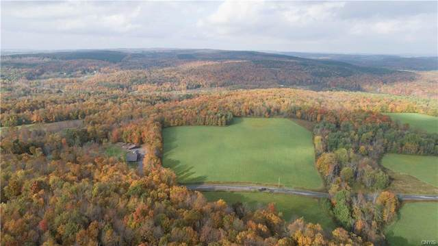 30 acres Chaphe Hill Road, Nelson, NY 13061 (MLS #S1373586) :: Lore Real Estate Services