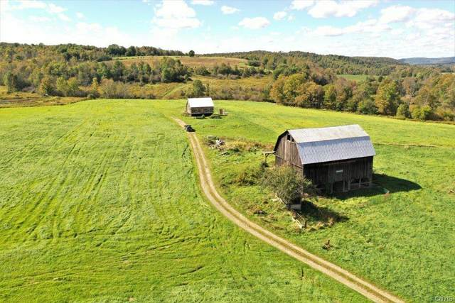2754 County Route 102, Woodhull, NY 14801 (MLS #S1373676) :: Lore Real Estate Services